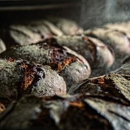 Entlarvt: Dieser Film räumt mit einigen Mythen rund ums Brot auf